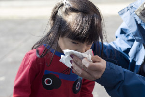 均衡素食可預防感冒(文: 盧麗愛醫生)