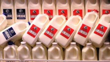不飲牛奶也可以攝取足夠鈣質(文:梁淑芳醫生)