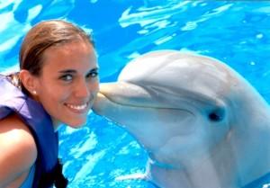如果你愛海豚,永不要付款跟牠們游泳
