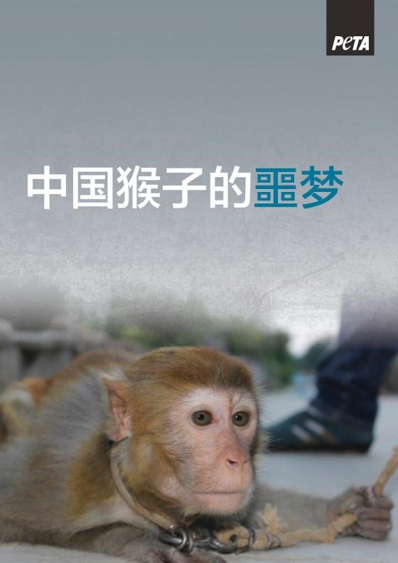 Suzhou-Circus-Monkey-Report_Chinese_A4_300-page-001-e1446778788693