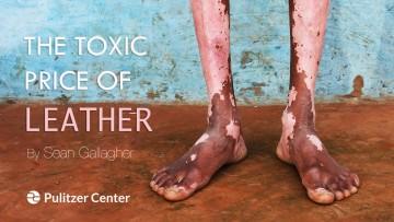 紀錄片推薦:一個精品包的重量《The Toxic Price of Leather》皮革產業的污染