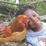 《動物權利行動手冊》|第一章(上)
